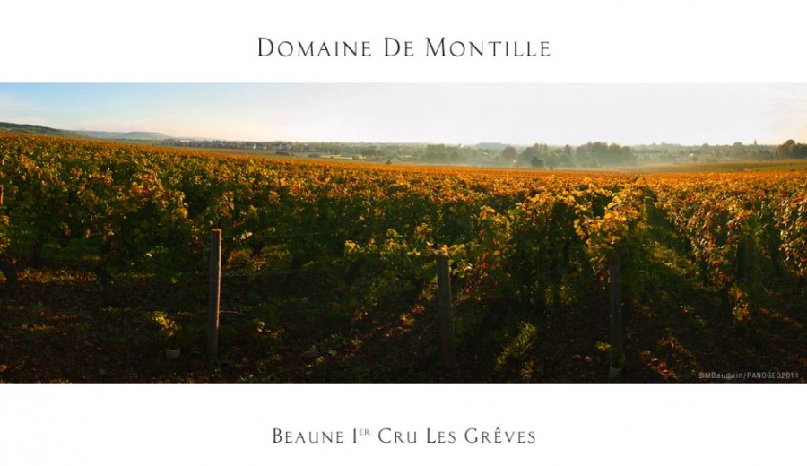 Beaune Greves